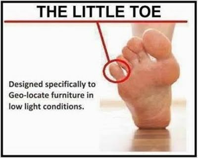 littletoe